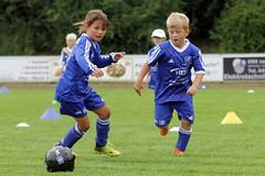 Feriencamp Pln 30.08.16 - c (7) (HSV-Fuballschule) Tags: hsv fussballschule feriencamp pln vom 2908 bis 02092016