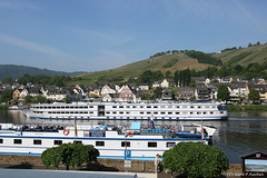 "Die "" REX-RHENI "" (gerdf.aachen) Tags: europa rheinlandpfalz reise outdoor schiffe zell mosel moseltal das"