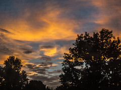 sunrise (jojoannabanana) Tags: 3662016 canonpowershot clouds color doubleexposure dramatic dreamy silhouette sky sunrise s100 trees warmcolors window