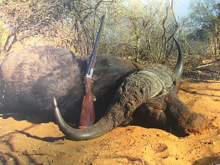 Namibia Dangerous Game Safari - Caprivi Strip 94