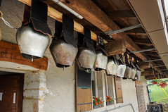 20160806_037_DennisWansink (Dennis Wansink) Tags: zoogdiervereniging zomerkamp bergen jura bel koe decoratie vaud zwitserland ch