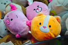You Can Win Cats or Pigs (Rich Renomeron) Tags: olympusmzuiko1442mmf3556ez olympusomdem10 arcade bethanybeach prizes stuffedanimals