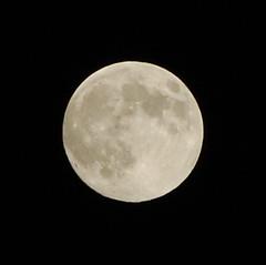 DSC_5316 (beltz6) Tags: moon fullmoon grainmoon