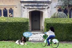 Day trip (Shane.....) Tags: dog rabbit green bike lady duc