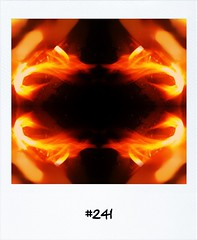 """#DailyPolaroid of 26-5-12 #241 • <a style=""""font-size:0.8em;"""" href=""""http://www.flickr.com/photos/47939785@N05/7288016454/"""" target=""""_blank"""">View on Flickr</a>"""
