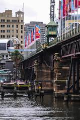 Sydney (MikePScott) Tags: camera bridge sea lens sydney structures australia newsouthwales tasmansea sydneyharbour builtenvironment nikon18200mmf3556 nikond300 featureslandmarks