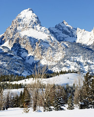 Grand Teton Peak (bhophotos) Tags: travel trees winter usa snow mountains nature landscape geotagged nikon day wyoming tetons jacksonhole grandtetonnationalpark gtnp d80 18135mmafs grandtetonpeak projectweather bruceoakley pwwinter