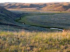 A prairie creek in Montana (montanatom1950) Tags: water montana streams creeks uppermissouririverbreaksnationalmonument