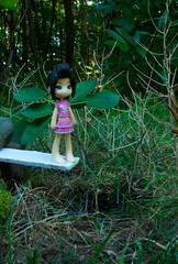Cassidy Takes the Plunge? (WhyDolls) Tags: trees summer pool grass forest swimming toy outside outdoors reina pond woods doll dive jungle figure barefeet pinkyst pinkystreet wading divingboard pk009a
