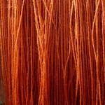 6.Cortinarius semisanguineus Rödskivig spindelskivling alunbetat alpackagarn med silke thumbnail