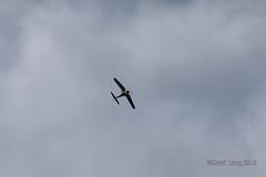 Vought F4U Corsair-41 (Clubber_Lang) Tags: airshow corsair farnborough f4u vought fia2016