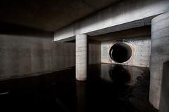 703_3101 (M Falkner) Tags: urban underground concrete tank flood tunnel drain management watershed pillars subterranean exploration sewer overflow ue urbex cso draining keelesdale