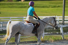 IMG_2542 (SJH Foto) Tags: horse show rider action shot dressage wtc walk trot canter teens teenagers girls