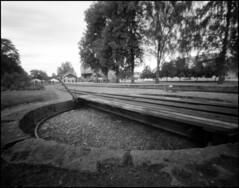 031-2016_BerggerPancro400 (rubbernglue) Tags: pinhole f375 toyo45aii mariefred sverige sweden filmexif analog 4x5 bw blackandwhite bwfp filmphotography trainroundabout r09