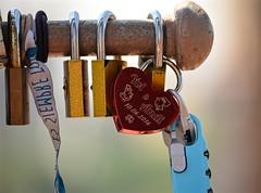 Yui & Andi (pjpink) Tags: locks padlocks symbols testamonials expressions brooklyn brooklynbridge bridge nyc newyork newyorkcity city urban ny june 2016 spring pjpink