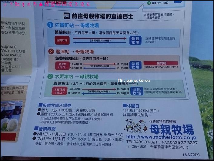 木更津母親牧場 (4).JPG