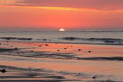 untitled-1167 (Mark Huff1) Tags: alnmouth beach england northsea northumberland sea unitedkingdom sunrise