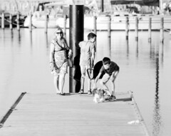 Walking the Dog (holtelars) Tags: pentax pentax6x7 smcpentax67 500mm 6x7 67 idealformat 120 mediumformat blackandwhite monochrome bw film analog analogue foma fomapan fomapan400 fomapan400action 400iso classicblackwhite filmforever filmphotography larsholte homeprocessing jobo autolab atl1500 xtol vedbkhavn marina danmark denmark f56