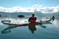 Haukur and Svenni watching Grey Seal. Hrteyjar. (Steini Jns) Tags: greyseal hrteyjar breiafjrur kayak