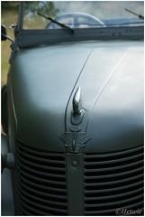 Austin 8 (HP015388) (Hetwie) Tags: leger heide veluwe car heather jeep austin8militarytourer nature posbank natuur olsmobile army auto planten rheden gelderland nederland