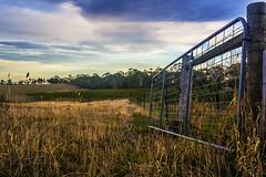 Farm Gate (Ryan M. Harris) Tags: farm gate grass field australia victoria burke wills fence hdr