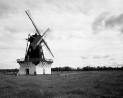 The mill (Theolde) Tags: lf 4x5 film fomapan r09studio11510min rodenstock