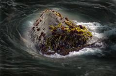 Island (Paemon) Tags: ocean california color rock pentax pacificocean kr centralcoast westcoast portsanluis anisland paemon