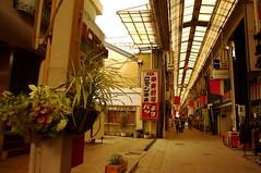 Shopping Street (tttske_C) Tags: aichi shoppingstreet seto 愛知県 商店街 アーケード 瀬戸市