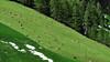 der letzte Schnee (mikiitaly) Tags: italy spring südtirol altoadige pfitschtal colorphotoaward pfitsch elementsorganizerfrühling naturwiesenpfitschtulfer