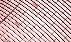 Rectangles Curved (SAUD ALRSHIAD) Tags: pink light abstract lens photography photo nikon flickr mood angle photos ngc saudi curved 2012 rectangles saud  flickraward d7000  nikonflickraward nikond7000 alrshiad msawr  saudarshiad saudalrshiad 7000 7000