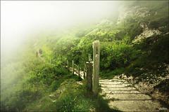 Trust in God with all your heart (pickled_newt ( busy again on n off B)) Tags: mist fog sussex walks unitedkingdom coastal greenery
