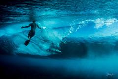 hello, fiji! (SARA LEE) Tags: ocean blue fiji surf underwater crystal clear spl sarahlee stuartjohnson fijisurf fijisurfco