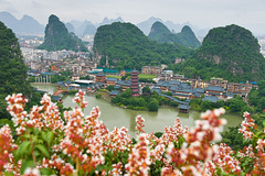 Pagoda and flower (Anan Charoenkal) Tags: china guilin diecai