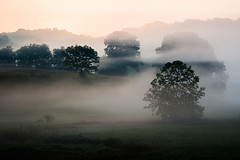 Layers {explored} (.monodrift) Tags: morning trees nature fog sunrise farm olympus hills em5