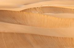 Sand Walls (Tommaso Renzi) Tags: caboverde nikkor70300 desertodeviana ilhadeboavista nikond300s desertrocksearthmountaindesertodeviana
