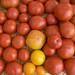 Gibbs Road Farm veggies (June 2012) tomatoes 3