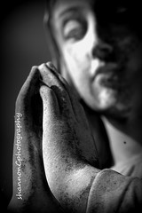 Mary-Church of Our Lady Immaculate Study #5 (Gig-Photography) Tags: church statue hands mary praying guelph ourladyofimmaculate