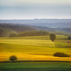 Layered (warmianaturalnie) Tags: green yellow square landscape evening spring space poland fields layers warmia