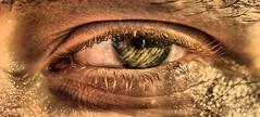 Golden Eye (DawnWarrior) Tags: macro eye alex nikon raynox tonemapped dcr150 d3000
