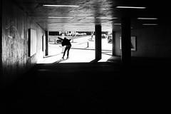 fly like a bee (gato-gato-gato) Tags: street leica bw white black classic film blanco monochrome analog 35mm person schweiz switzerland flickr noir suisse strasse zurich negro streetphotography pedestrian rangefinder human streetphoto manual monochrom zrich svizzera weiss zuerich blanc m6 manualfocus analogphotography schwarz ch wetzlar onthestreets passant mensch sviss leicam6 zwitserland isvire zurigo filmphotography streetphotographer homedeveloped fussgnger manualmode zueri strase filmisnotdead streetpic messsucher manuellerfokus gatogatogato fusgnger leicasummiluxm35mmf14 gatogatogatoch wwwgatogatogatoch streettogs believeinfilm tobiasgaulkech