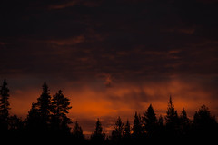 Ciel de minuit (Samuel Raison) Tags: sunset nature finland nikon fort coucherdesoleil finlande nikond2xs nikond3 linaigrettes nikon41635mmafsgvr nikon2870200mmafsvr nikon4200400mmafsgvr