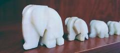 #Elephant#abundance#traditional (bilge878) Tags: traditional elephant abundance