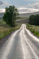 The road to Dufftown (Paul Perton) Tags: 50 glenrinnes highlands leicam9 leicasummilux50mmf14 scotland farmland