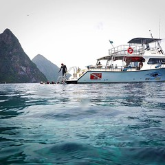 If Carlsberg did diving...#PADI #scuba #diving #sport #active #awesome #underwater #LSD #SimplyBeautiful #DiveSaintLucia #moray #ray #eel #turtle #lionfish #StLucia #London #LSDscuba #cool #ocean #boat #underwater #pufferfish #octopus #seahorse #jawfish # (lsdscuba) Tags: ifttt instagram scuba lsd