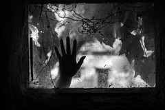 H.E.L.P (crystyradulescu) Tags: hand black white bw window spider web nails rust old creepy scary help view dirty dust image d3200 nikon f18 35mm contrast strong fingers palm
