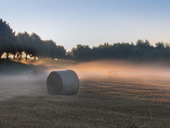 Strohballen im Nebel (Peter L.98) Tags: sonnenaufgang nebel feld strohballen sonne morgens