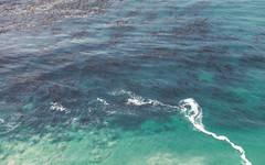 Big Sure Ocean (_donaldphung) Tags: twins peak twinspeak bixbybridge pointreyestreetunnel elcpitan pfeifferbeach