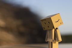 Sad Danbo (tommys9300) Tags: danbo robot toy juliet hungary letenye