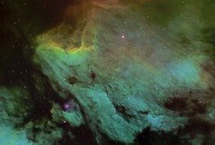 IC 5070 - Pelican Nebula (Manifest Stephanie) Tags: pelican nebula ic5070 televue np101 astrophotography night sky abstract narrowband