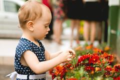 Florist (Andr Moecke) Tags: flowerpower colors littlegirl luiza luisa